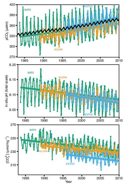 Fig 3.18 IPCC WG1AR5 pH changes