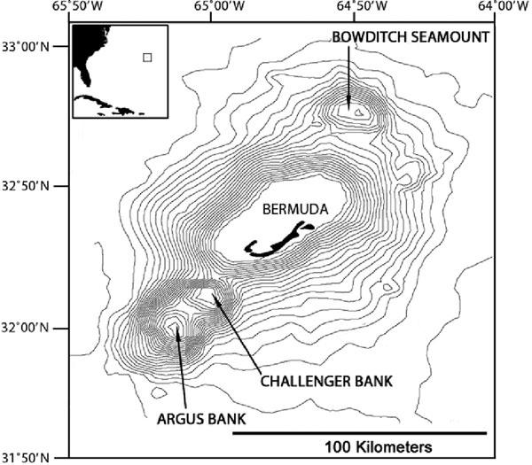 bermuda bathymetry NOAA