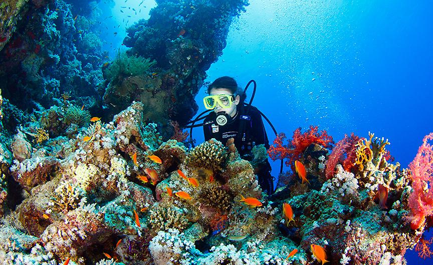 reef Vladimir Levantovsky effervescent photography tfile_oceans_big_13