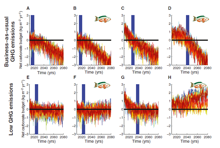 reef persistence Kennedy et al Current Biol 2013