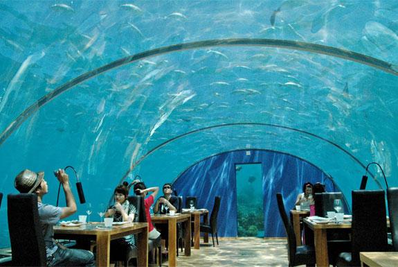 underwater restaurant in Maldives ithaa-m