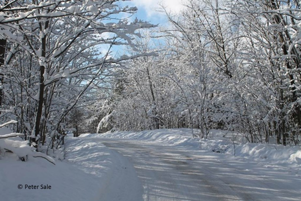 winter road scene Jan 2016